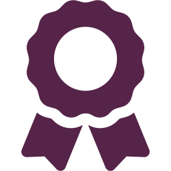 awards and recognition icon
